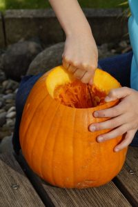 Hallowing-pumpkin carving hollowing out