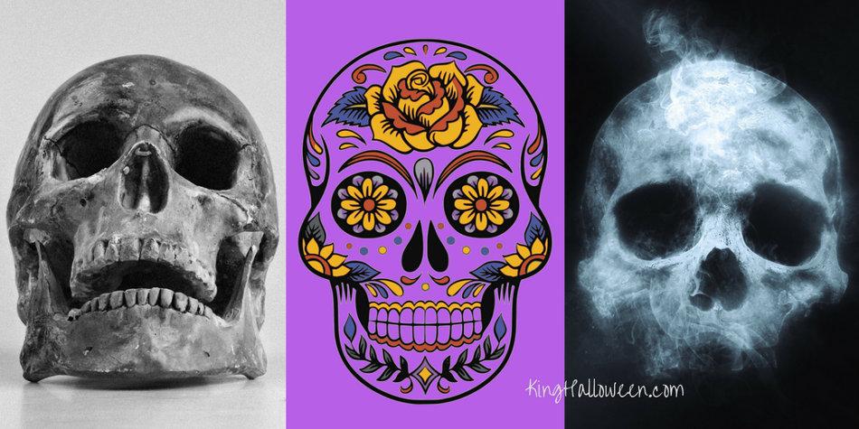 Skull Symbol Graphic three skulls
