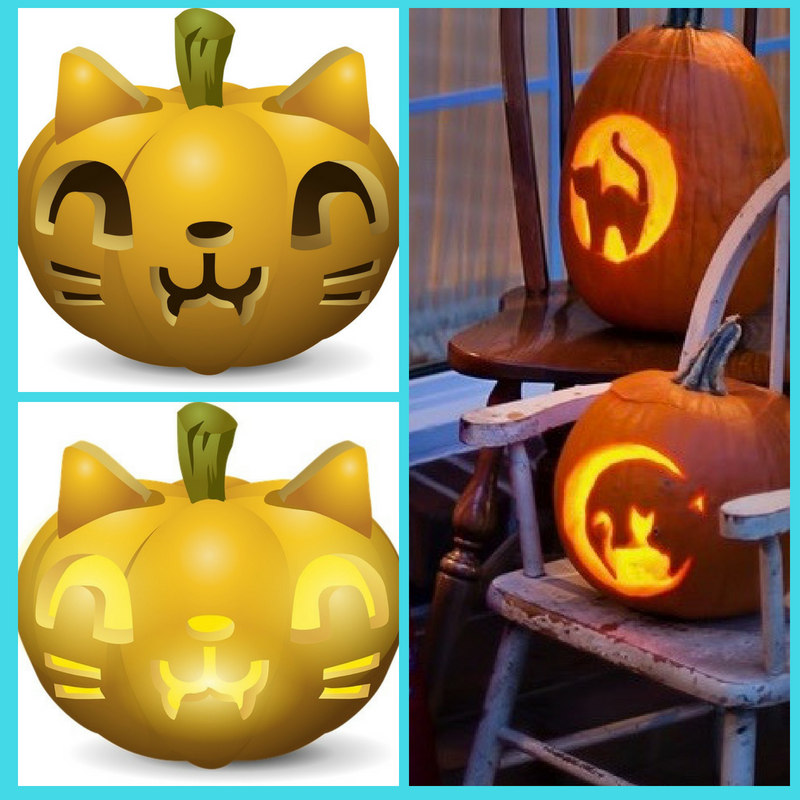 Cat pumpkin carving images x three