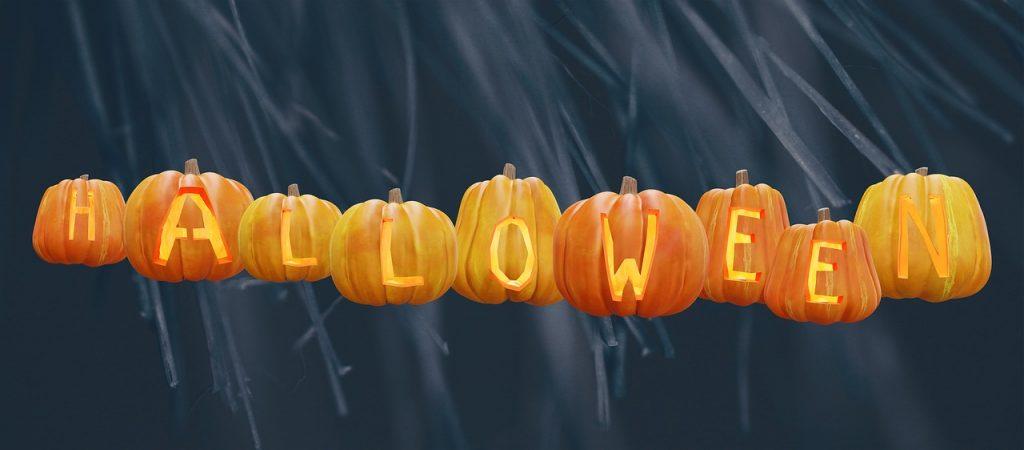 Halloween pumpkins lined up